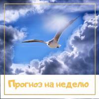 ПРОГНОЗ НА НЕДЕЛЮ | С 10 ПО 16 АВГУСТА